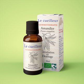Le cueilleur - Gemmothérapie d'Amandier-macerat glycériné de bourgeons-le cueilleur