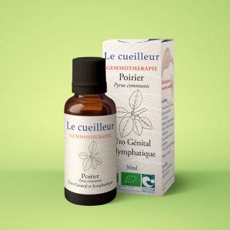 Le cueilleur - Gemmothérapie Poirier